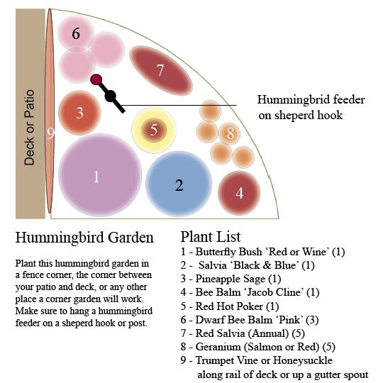 Hummingbird Garden for a Corner
