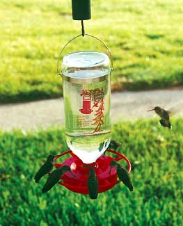 how to build a hummingbird feeder