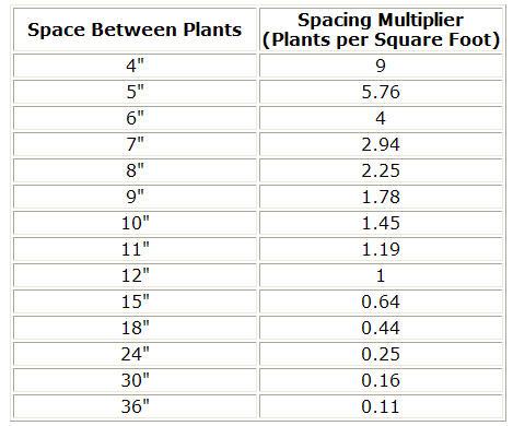 How to measure linear feet – beaver basement.